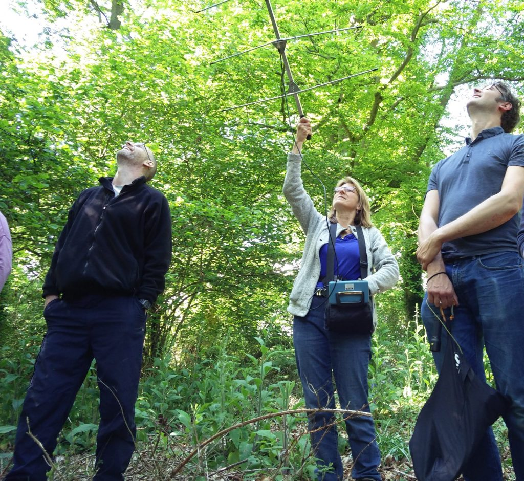 Delegates on training course radio tracking a bat