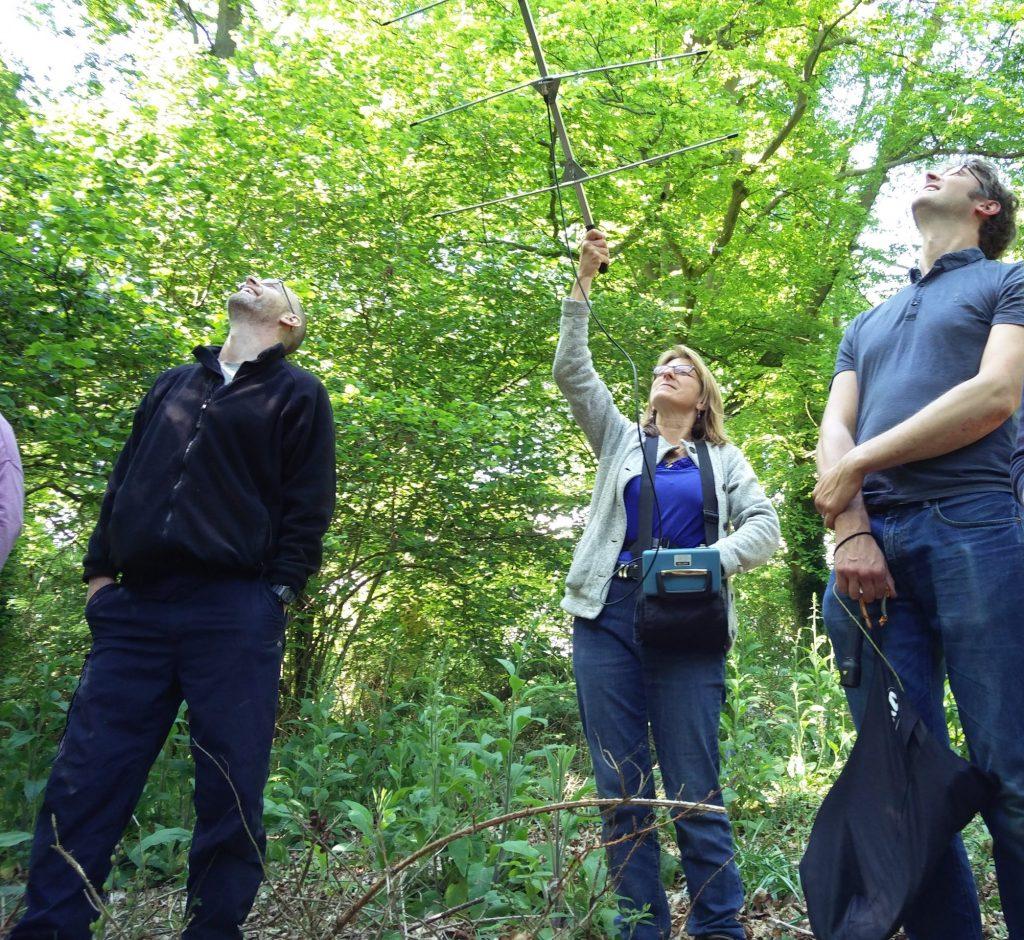 Delegates on training course radio tracking a bat