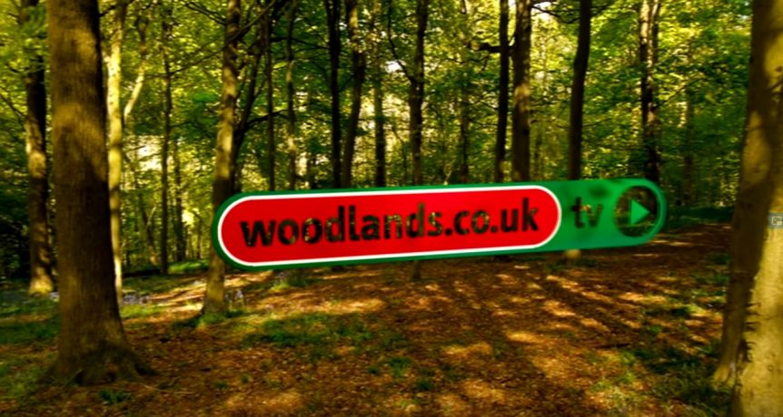 Woodlands TV image