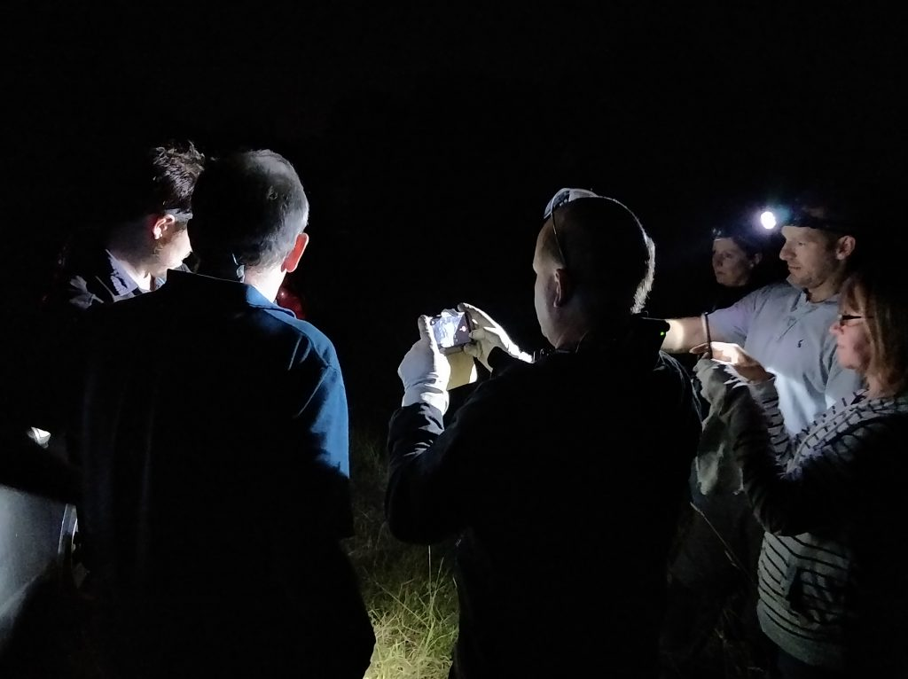 A group identifying a bat at night on a training course
